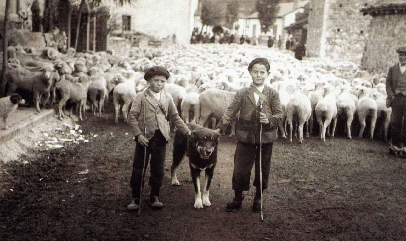 Dos zagales con su perro y ovejas trashumantes en el pueblo- Foto antigua